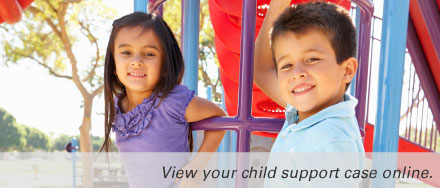 View your child support case online.
